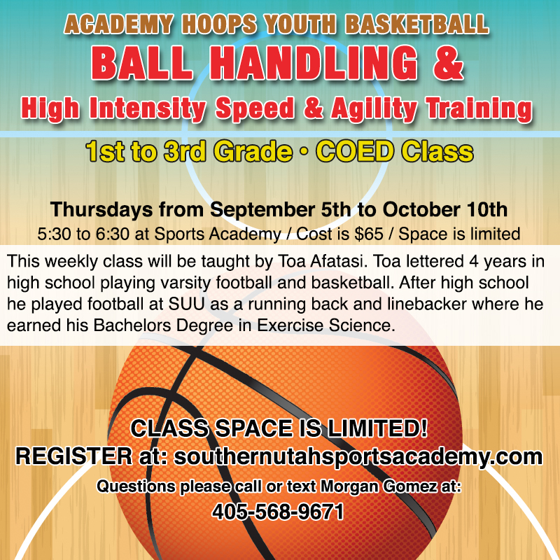 1st to 3rd Grade Ball Handling and Speed & Agility Training